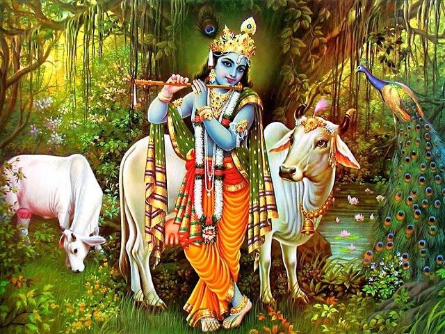 lord Krishna Images & Krishna Photos in HD Quality ( 30+ ) 19