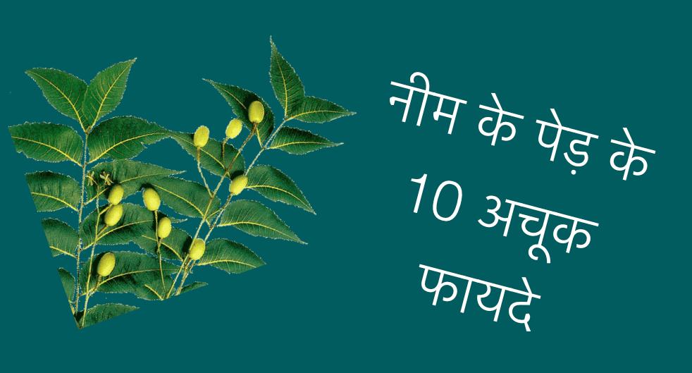 Uses of Neem Tree in Hindi