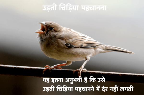 Hindi Muhavare With Meanings and Sentences 1000+ ( हिंदी मुहावरे और अर्थ ) 5