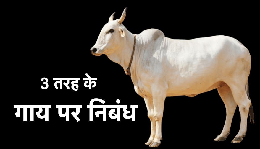 गाय पर निबंध 3 तरह के  - Cow essay in Hindi [ 2021 Updated ] 3