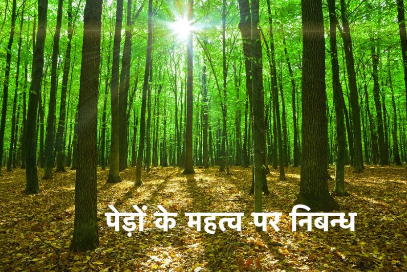 Essay on Importance of Trees in Hindi (1)