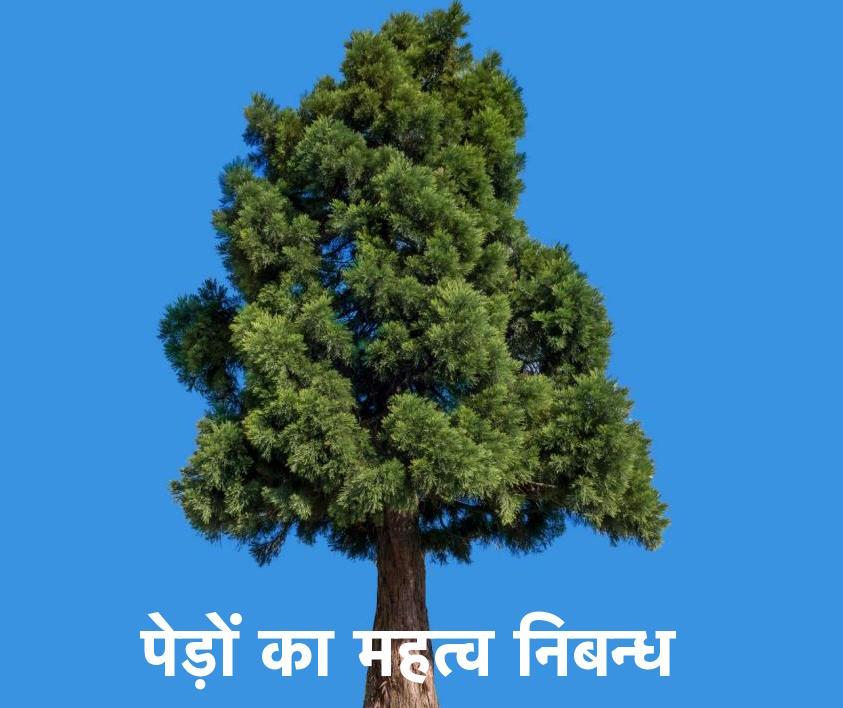 पेड़ों का महत्व निबन्ध Essay on Trees in Hindi @ 2018 1