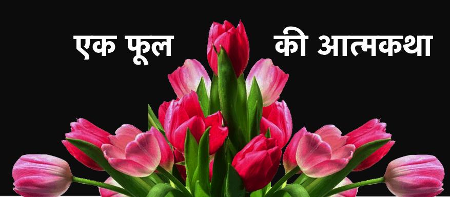 Phool ki Atmakatha in Hindi