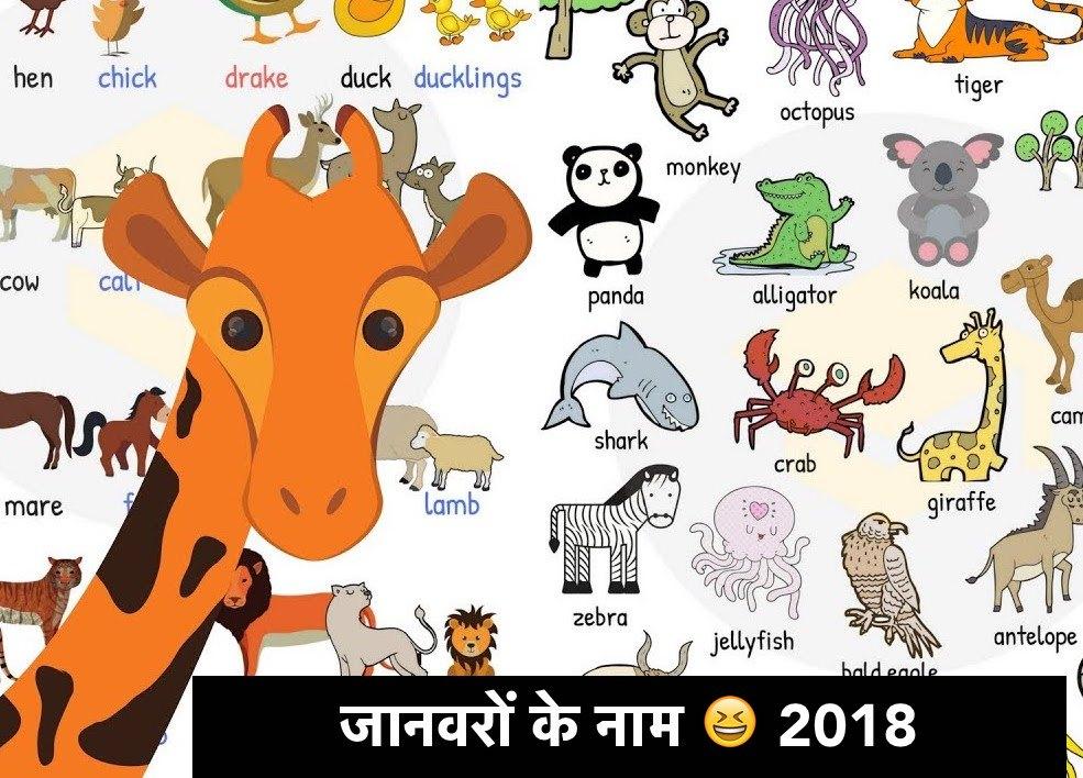 जानवरों के नाम 😆 2018