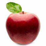 Fruits Name in Hindi & English सारे फलों के नाम 30
