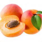 Fruits Name in Hindi & English सारे फलों के नाम 14