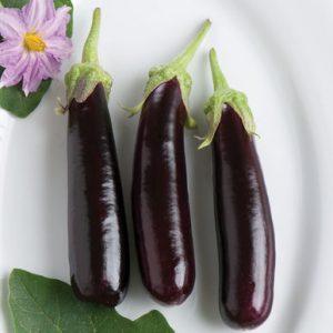 Vegetables Name in Hindi and English With Pictures सब्जियों के नाम इंग्लिश और हिंदी में 72