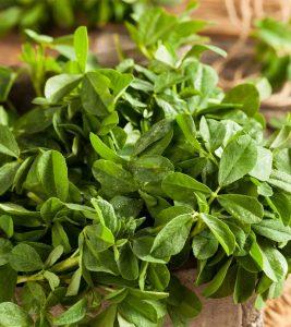 Vegetables Name in Hindi and English With Pictures सब्जियों के नाम इंग्लिश और हिंदी में 73