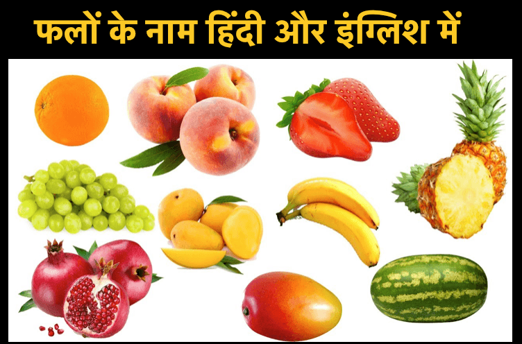 Fruits Name in Hindi & English