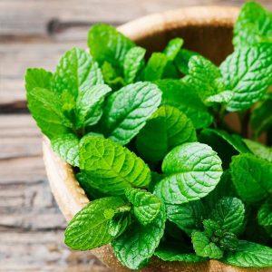 Vegetables Name in Hindi and English With Pictures सब्जियों के नाम इंग्लिश और हिंदी में 70