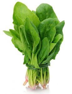 Vegetables Name in Hindi and English With Pictures सब्जियों के नाम इंग्लिश और हिंदी में 61