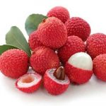 Fruits Name in Hindi & English सारे फलों के नाम 27